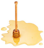 Wooden stick stays in the honey puddle. Stock Image