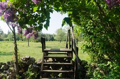 Wooden stile crossing a dry stone wall in a rural landscape by springtime stock photos