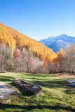 Wooden stock in a colourful Autumnal panorama in Italy Stock Photo