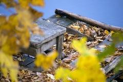 Wooden stool fallen leaves Stock Photos