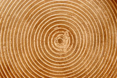 Wooden structure. Wooden round structure in closeup Stock Photo