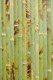 Wooden structure bamboo Royalty Free Stock Photos