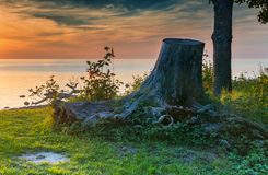 Wooden stub at a beach of the Baltic Sea, sunset Royalty Free Stock Photo