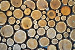 Wooden stubs background Stock Photo