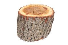 Wooden stump Royalty Free Stock Photos