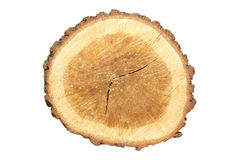 Wooden stump Stock Images