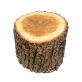 Wooden stump Stock Photo