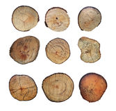 Wooden stump isolated on the white background. Round cut down tree with annual rings as a wood texture Royalty Free Stock Photo