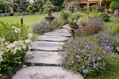Wooden stump path with beautiful flowers in park. Stock Photo