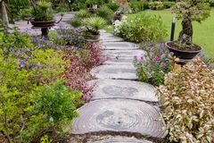 Wooden stump path with beautiful flowers in park. Stock Photography