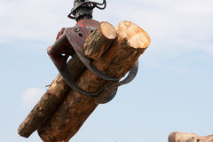 Wooden stumps on a crane. Two wooden stumps on a crane Royalty Free Stock Photos