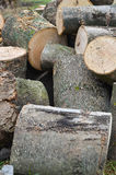 Wooden stumps. On a pile Stock Photography