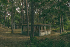 Wooden summerhouse in the forest. Mysterious summer house on the background of a wooden abandoned abandoned house in a pine forest Stock Photo