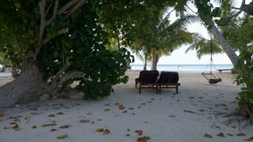 Wooden chaise lounges under a palm tree on a tropical beach. Maldives. Wooden sunbed under a palm tree on a tropical beach. Maldives. 4k stock video footage