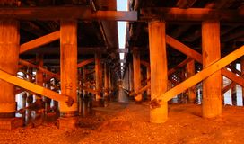 Wooden support of bridge and pier. In river showing perspective in warm lighting Royalty Free Stock Photos