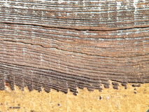 Wooden surface Stock Images