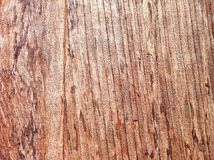 Wooden surface Stock Image