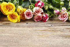 Wooden surface with copy space decorated with colorful roses. Royalty Free Stock Images