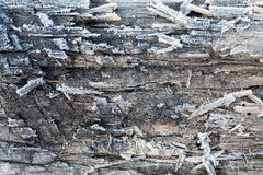 Wooden surface covered with frost Royalty Free Stock Image