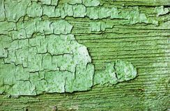 Wooden surface with cracked green paint Royalty Free Stock Images