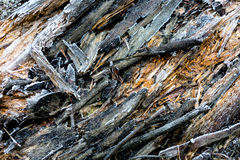 Wooden surface with frost Royalty Free Stock Photo