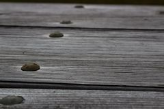 Wooden surface with nails royalty free stock photography