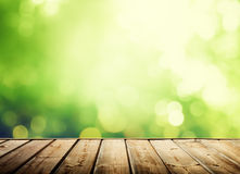 Wooden surface and sunny forest. Wooden surface and green sunny forest Royalty Free Stock Images