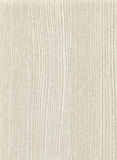 Wooden surface texture Stock Image