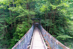 Wooden suspension bridge in the forest Stock Photo