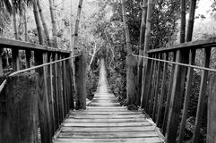 Wooden suspension bridge Royalty Free Stock Photos