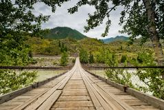 Wooden suspension road bridge on the river Katun. Altai Mountains Stock Images