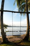 Wooden swing chair hanging on tree near beach at island in Phuke stock image