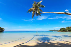 Wooden swing on a coconut palm. Beautiful sea landscape Stock Photography