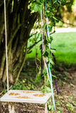 Wooden swing hanging from tree. Old wooden swing hanging from a tree decorated with leaves on green grass background Royalty Free Stock Photos