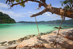 Wooden swing hanging on tree at tropical beach Royalty Free Stock Photos