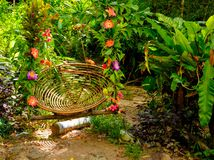 Wooden swing in the jungle Stock Images