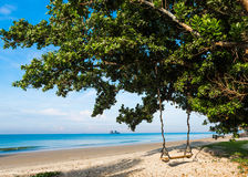 Wooden swing on a tropical beach Stock Images