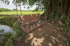 Wooden swing. Under a big tree near the pond and pastures Royalty Free Stock Images