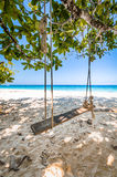 Wooden Swing and weathered rope on Beautiful tropical beach. White sand and blue sky background Stock Photo