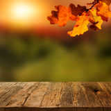 Wooden table with autumn background Royalty Free Stock Image