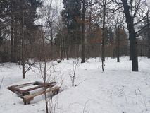 Wooden table and bench withered in the snow in the forest royalty free stock image