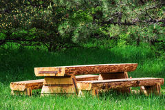 Wooden table with benches in a pine forest Stock Images