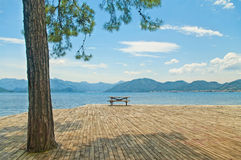 Wooden table with benches on platform at sea with big pine tree Royalty Free Stock Photos