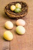 Wooden table with birds nest and eggs vertical Royalty Free Stock Photography