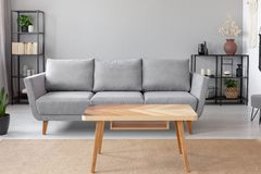 Wooden table on carpet in front of grey sofa in minimal living room interior with plant. Real photo stock photos