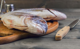 Wooden table cutting board with fresh raw dorado fish. Gutted, near the knife, salt and pepper Royalty Free Stock Photo
