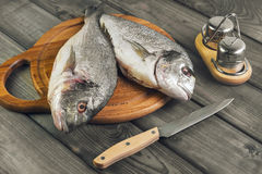 Wooden table cutting board with fresh raw dorado fish. Gutted, near the knife, salt and pepper Royalty Free Stock Image