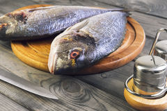 Wooden table cutting board with fresh raw dorado fish Royalty Free Stock Image