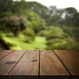 Wooden table in garden for product display montage Royalty Free Stock Photo