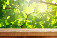 Wooden table and ginkgo green leaves background. Stock Image